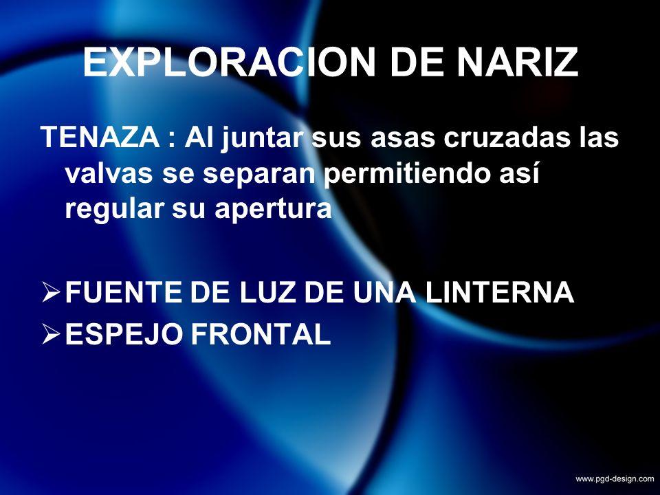 EXPLORACION DE NARIZ TENAZA : Al juntar sus asas cruzadas las valvas se separan permitiendo así regular su apertura FUENTE DE LUZ DE UNA LINTERNA ESPE