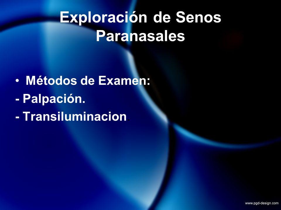Exploración de Senos Paranasales Métodos de Examen: - Palpación. - Transiluminacion.
