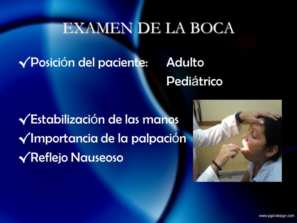 EXAMEN DE LA BOCA Posici ó n del paciente: Adulto Pedi á trico Estabilizaci ó n de las manos Importancia de la palpaci ó n Reflejo Nauseoso