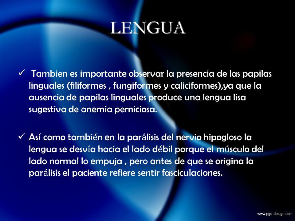 LENGUA Tambien es importante observar la presencia de las papilas linguales (filiformes, fungiformes y caliciformes),ya que la ausencia de papilas lin