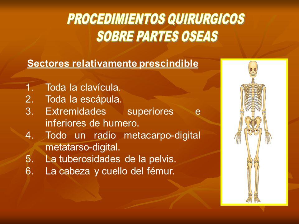 Tenotomía: Sección total o parcial de un tendón Tenorrafia: Sutura o recuperación de un tendón roto