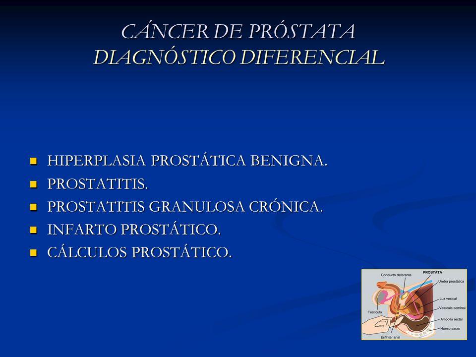 CÁNCER DE PRÓSTATA DIAGNÓSTICO DIFERENCIAL HIPERPLASIA PROSTÁTICA BENIGNA. HIPERPLASIA PROSTÁTICA BENIGNA. PROSTATITIS. PROSTATITIS. PROSTATITIS GRANU