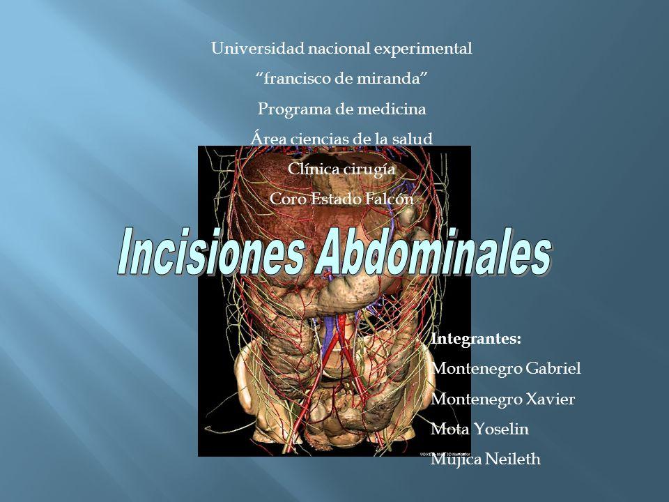 Limites: -Superior: Cara inferior del diafragma -Inferior: Limite estrecho superior de la pelvis -Paredes: posterior y anterolateral.
