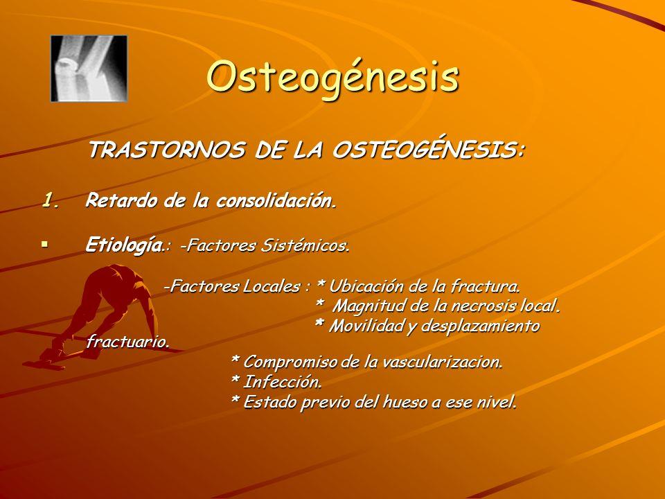 Osteogénesis Clínica: -Movilidad en los segmentos fracturados.