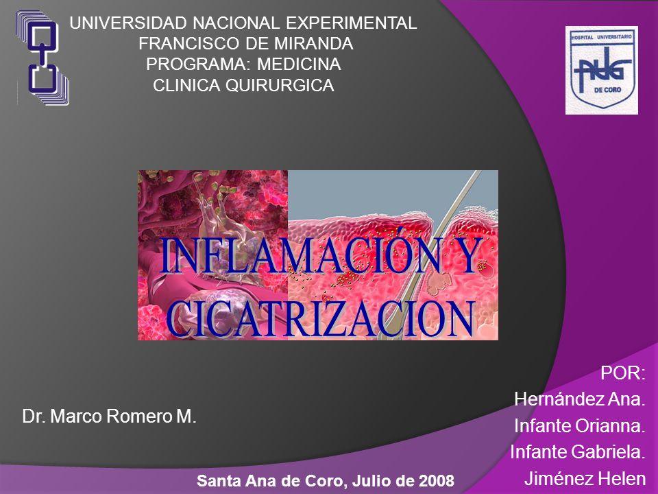 Dr. Marco Romero M. Santa Ana de Coro, Julio de 2008 POR: Hernández Ana. Infante Orianna. Infante Gabriela. Jiménez Helen UNIVERSIDAD NACIONAL EXPERIM
