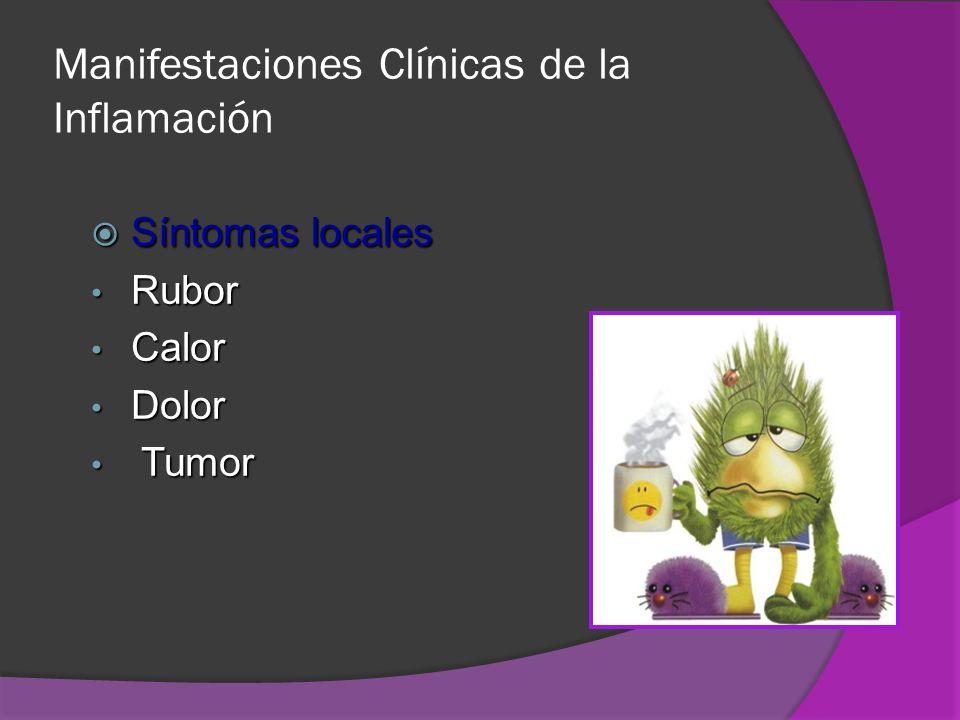 Manifestaciones Clínicas de la Inflamación Síntomas locales Síntomas locales Rubor Rubor Calor Calor Dolor Dolor Tumor Tumor