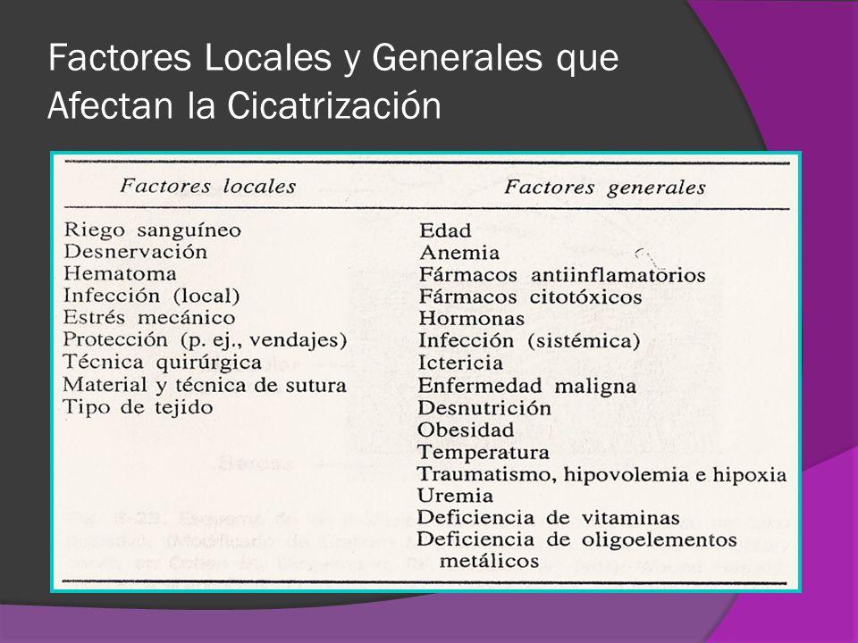 Factores Locales y Generales que Afectan la Cicatrización