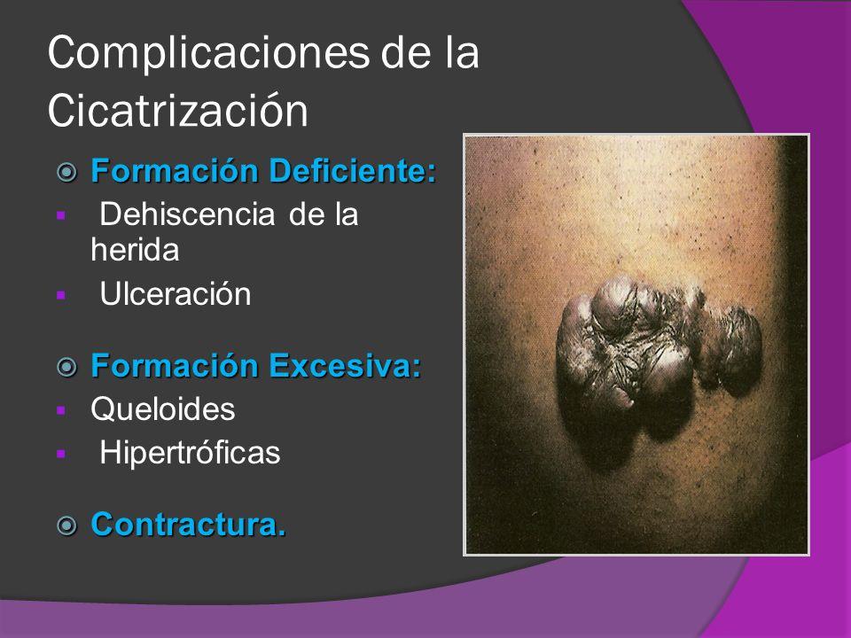 Complicaciones de la Cicatrización Formación Deficiente: Formación Deficiente: Dehiscencia de la herida Ulceración Formación Excesiva: Formación Exces