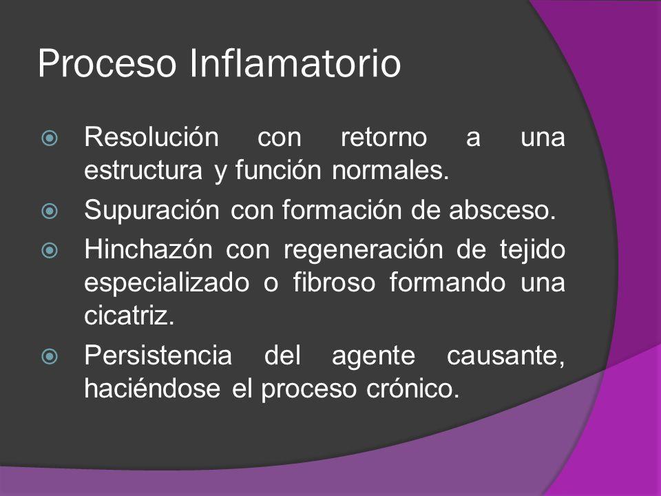 Proceso Inflamatorio Resolución con retorno a una estructura y función normales. Supuración con formación de absceso. Hinchazón con regeneración de te