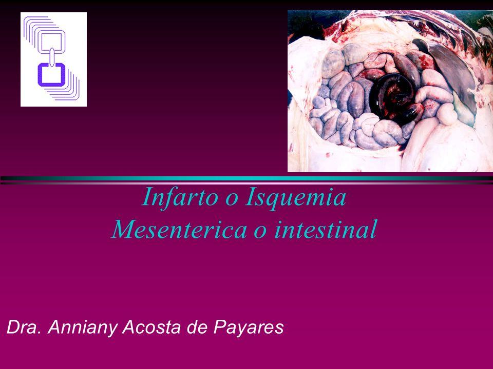 Infarto o Isquemia Mesenterica o intestinal Dra. Anniany Acosta de Payares