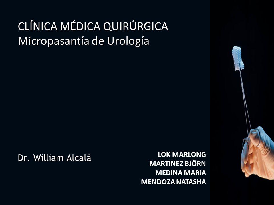 Dr. William Alcalá LOK MARLONG MARTINEZ BJÖRN MEDINA MARIA MENDOZA NATASHA CLÍNICA MÉDICA QUIRÚRGICA Micropasantía de Urología CLÍNICA MÉDICA QUIRÚRGI