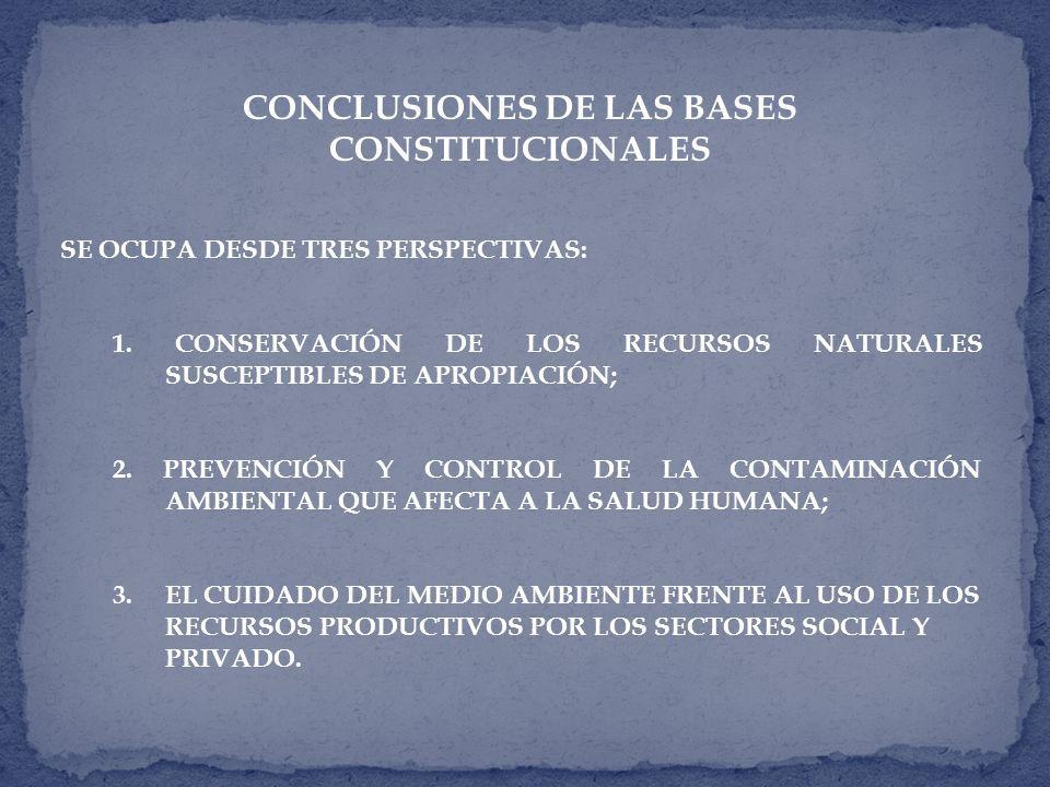 CONCLUSIONES DE LAS BASES CONSTITUCIONALES SE OCUPA DESDE TRES PERSPECTIVAS: 1.