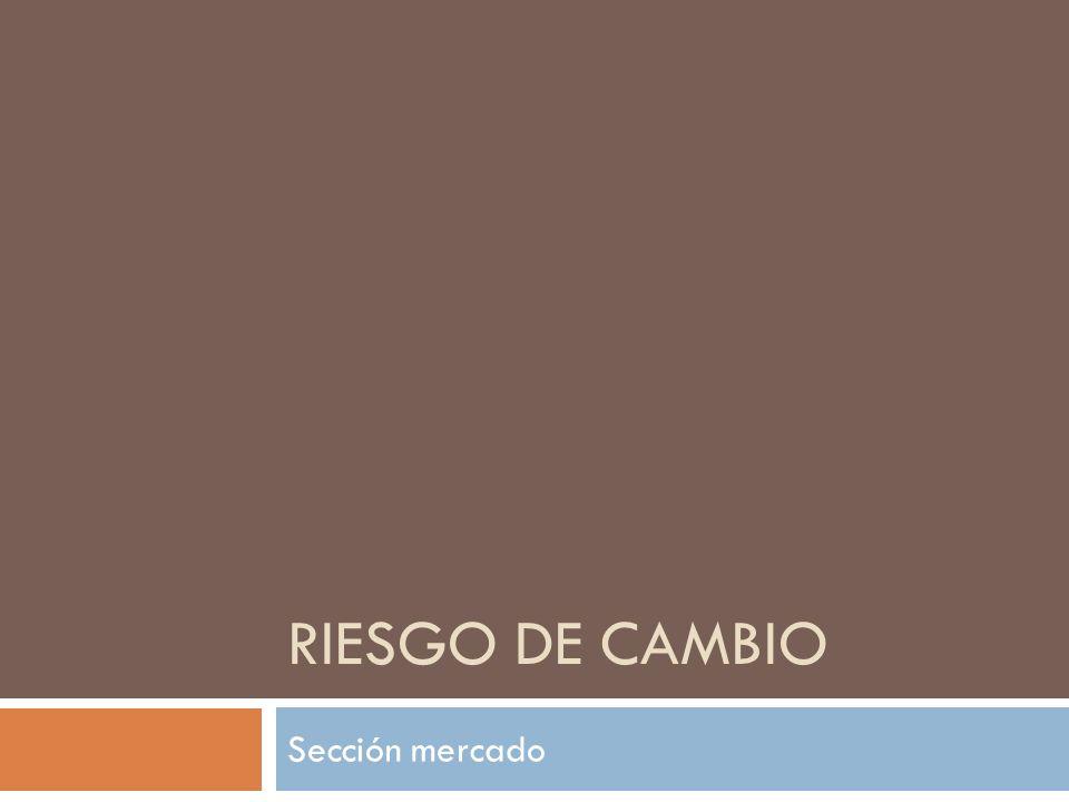 RIESGO DE CAMBIO Sección mercado