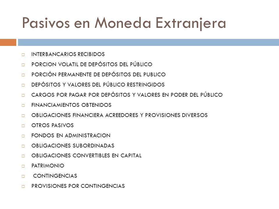 Pasivos en Moneda Extranjera INTERBANCARIOS RECIBIDOS PORCION VOLATIL DE DEPÓSITOS DEL PÚBLICO PORCIÓN PERMANENTE DE DEPÓSITOS DEL PUBLICO DEPÓSITOS Y