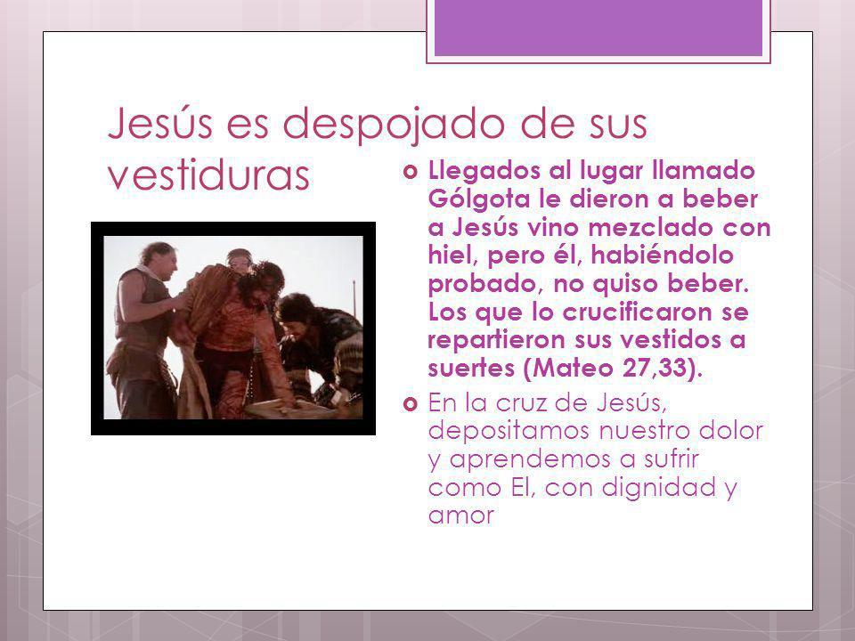 Jesús es despojado de sus vestiduras Llegados al lugar llamado Gólgota le dieron a beber a Jesús vino mezclado con hiel, pero él, habiéndolo probado,