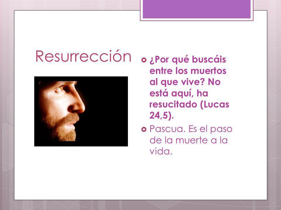 Resurrección ¿Por qué buscáis entre los muertos al que vive? No está aquí, ha resucitado (Lucas 24,5). Pascua. Es el paso de la muerte a la vida.