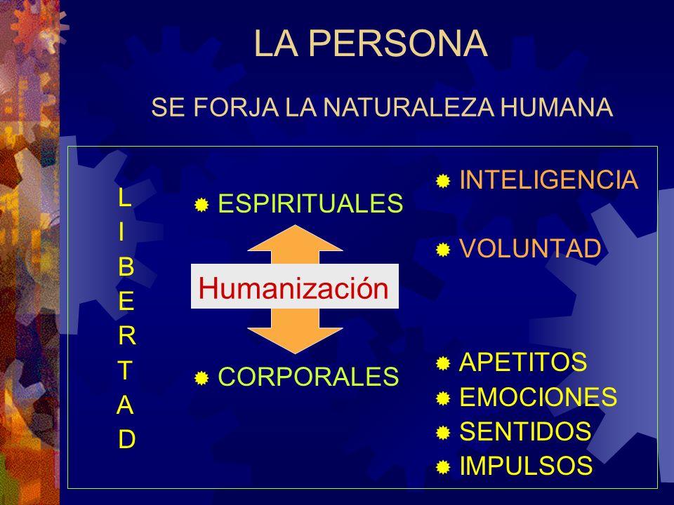 ESPIRITUALES CORPORALES Humanización LA PERSONA INTELIGENCIA VOLUNTAD APETITOS EMOCIONES SENTIDOS IMPULSOS L I B E R T A D SE FORJA LA NATURALEZA HUMA