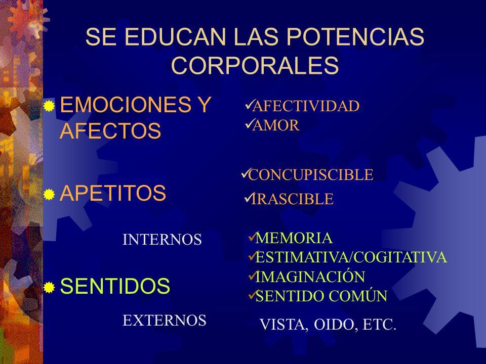 LA TAREA EDUCATIVA...