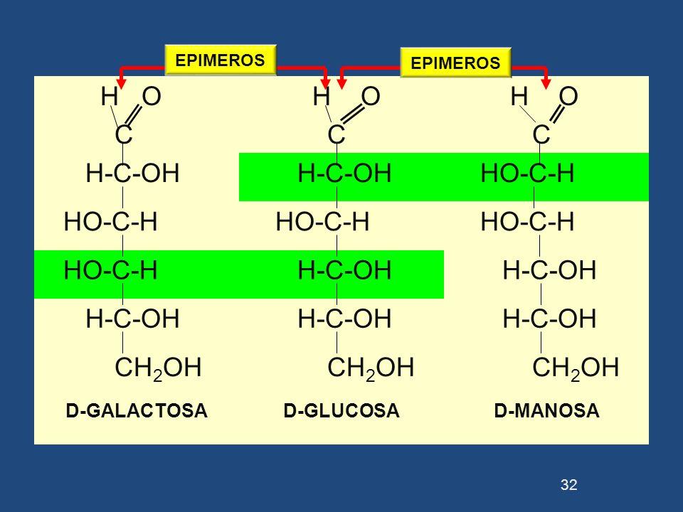H O C H O C H O C H-C-OH HO-C-H H-C-OH CH 2 OH D-GALACTOSAD-GLUCOSAD-MANOSA 32 EPIMEROS