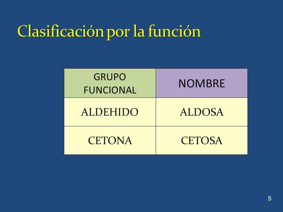 CHO H-C-OH CH 2 OH C=O CH 2 OH GLICERALDEHIDODIHIDROXIACETONA 6 Los monosacáridos mas simples son las triosas gliceraldehido y dihidroxiacetona