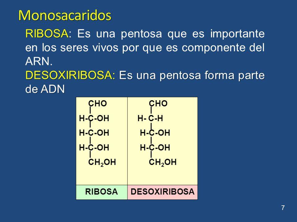 CHO H-C-OH HO-C-H H-C-OH CH 2 OH GLUCOSA 8 GLUCOSA: Es el azúcar mas importante en la naturaleza.