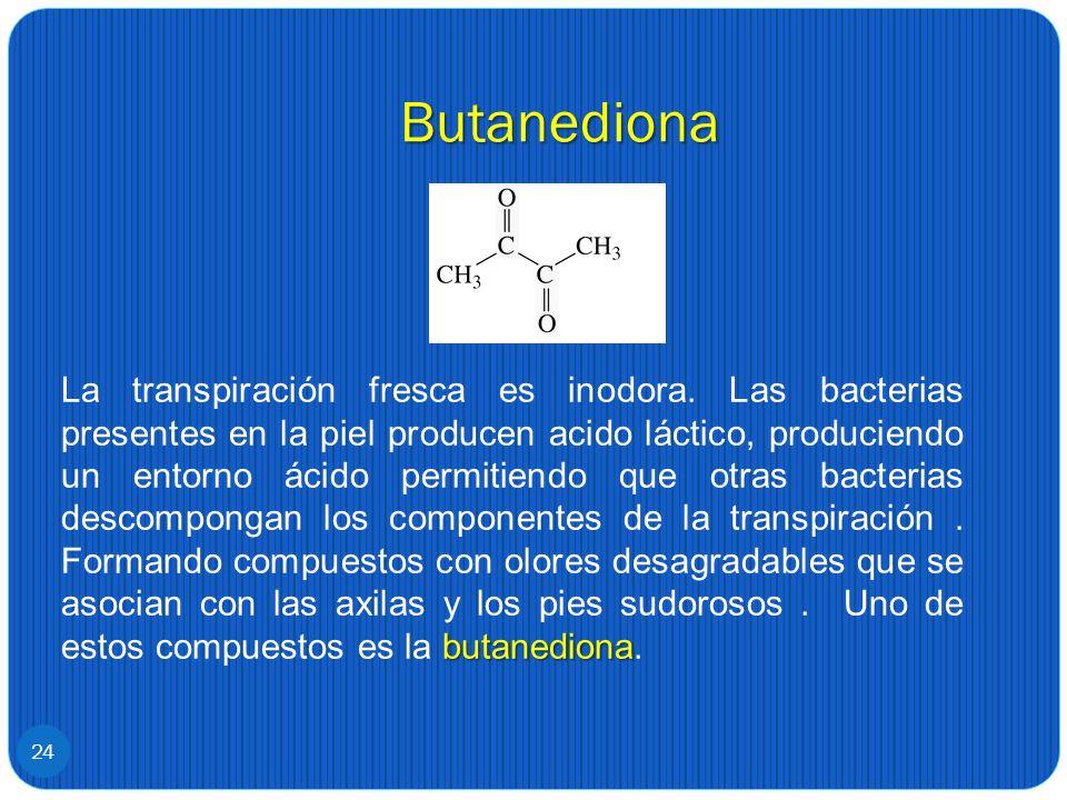 Butanediona 24 butanediona La transpiración fresca es inodora. Las bacterias presentes en la piel producen acido láctico, produciendo un entorno ácido