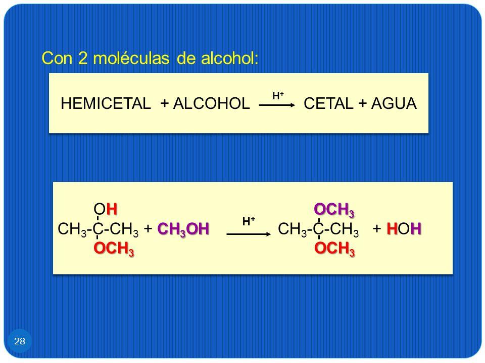 28 Con 2 moléculas de alcohol: HEMICETAL + ALCOHOL CETAL + AGUA H+H+ HOCH 3 OH OCH 3 CH 3 OH HH CH 3 -C-CH 3 + CH 3 OH CH 3 -C-CH 3 + HOH OCH 3 OCH 3