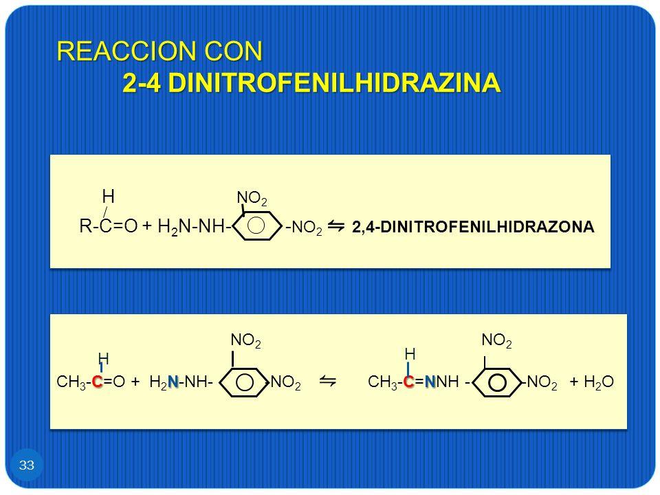 REACCION CON 2-4 DINITROFENILHIDRAZINA 33 H NO 2 R-C=O + H 2 N-NH- - NO 2 2,4-DINITROFENILHIDRAZONA H NO 2 R-C=O + H 2 N-NH- - NO 2 2,4-DINITROFENILHI