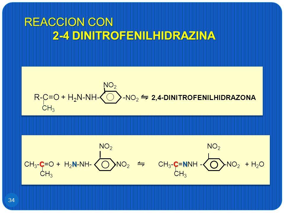 REACCION CON 2-4 DINITROFENILHIDRAZINA 34 NO 2 R-C=O + H 2 N-NH- - NO 2 2,4-DINITROFENILHIDRAZONA NO 2 R-C=O + H 2 N-NH- - NO 2 2,4-DINITROFENILHIDRAZ