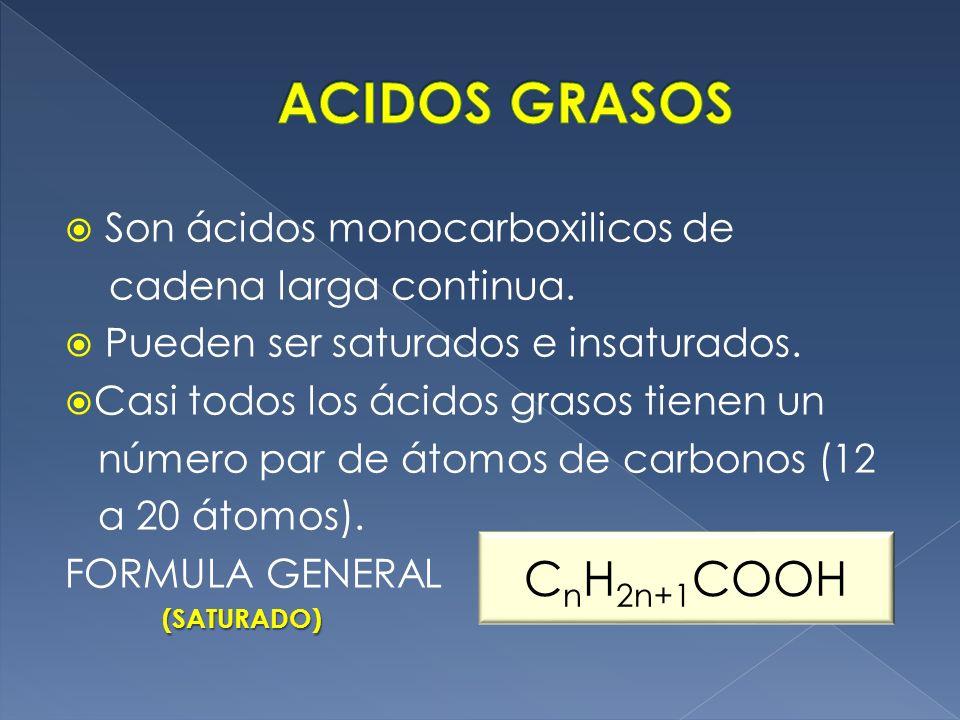 Son ácidos monocarboxilicos de cadena larga continua. Pueden ser saturados e insaturados. Casi todos los ácidos grasos tienen un número par de átomos
