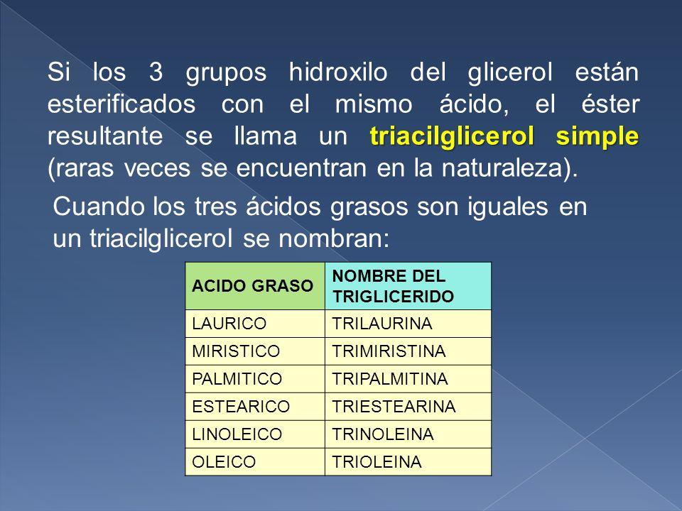 ACIDO GRASO NOMBRE DEL TRIGLICERIDO LAURICOTRILAURINA MIRISTICOTRIMIRISTINA PALMITICOTRIPALMITINA ESTEARICOTRIESTEARINA LINOLEICOTRINOLEINA OLEICOTRIO