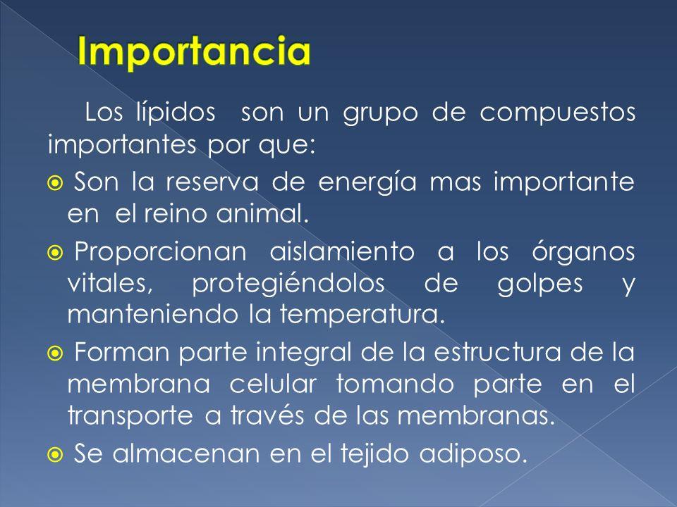 Los lípidos son un grupo de compuestos importantes por que: Son la reserva de energía mas importante en el reino animal. Proporcionan aislamiento a lo