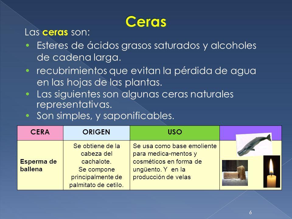 6 Las ceras son: Esteres de ácidos grasos saturados y alcoholes de cadena larga. recubrimientos que evitan la pérdida de agua en las hojas de las plan