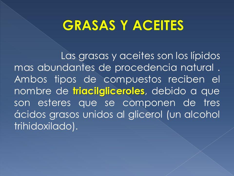 triacilgliceroles Las grasas y aceites son los lípidos mas abundantes de procedencia natural. Ambos tipos de compuestos reciben el nombre de triacilgl