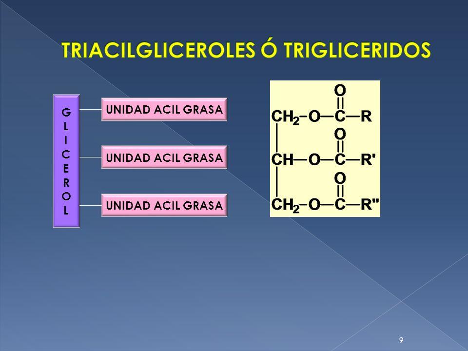 9. GLICEROLGLICEROL UNIDAD ACIL GRASA
