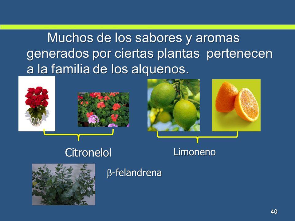 Muchos de los sabores y aromas generados por ciertas plantas pertenecen a la familia de los alquenos. Citronelol Citronelol 40 Limoneno -felandrena -f