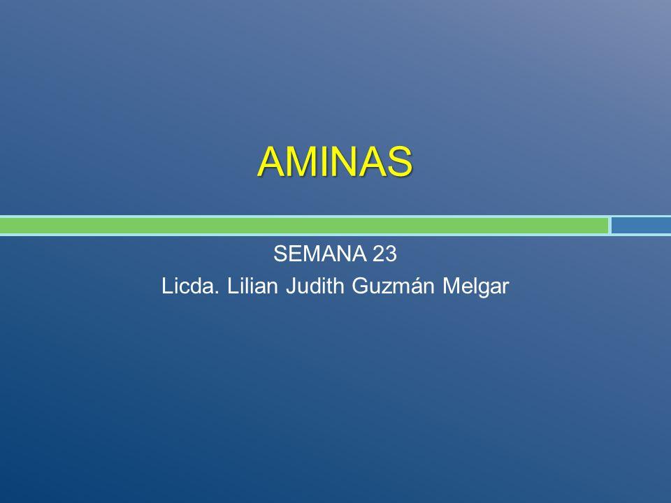 AMINAS SEMANA 23 Licda. Lilian Judith Guzmán Melgar