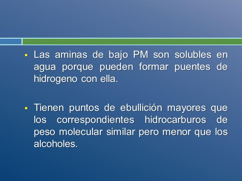 Las aminas de bajo PM son solubles en agua porque pueden formar puentes de hidrogeno con ella. Las aminas de bajo PM son solubles en agua porque puede