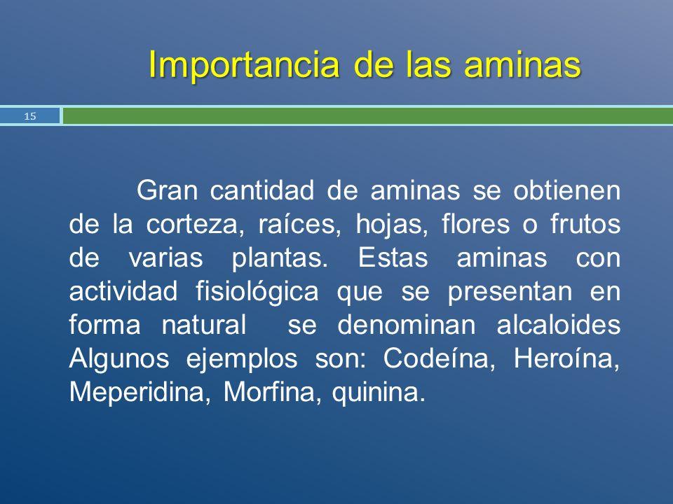 Importancia de las aminas Gran cantidad de aminas se obtienen de la corteza, raíces, hojas, flores o frutos de varias plantas. Estas aminas con activi