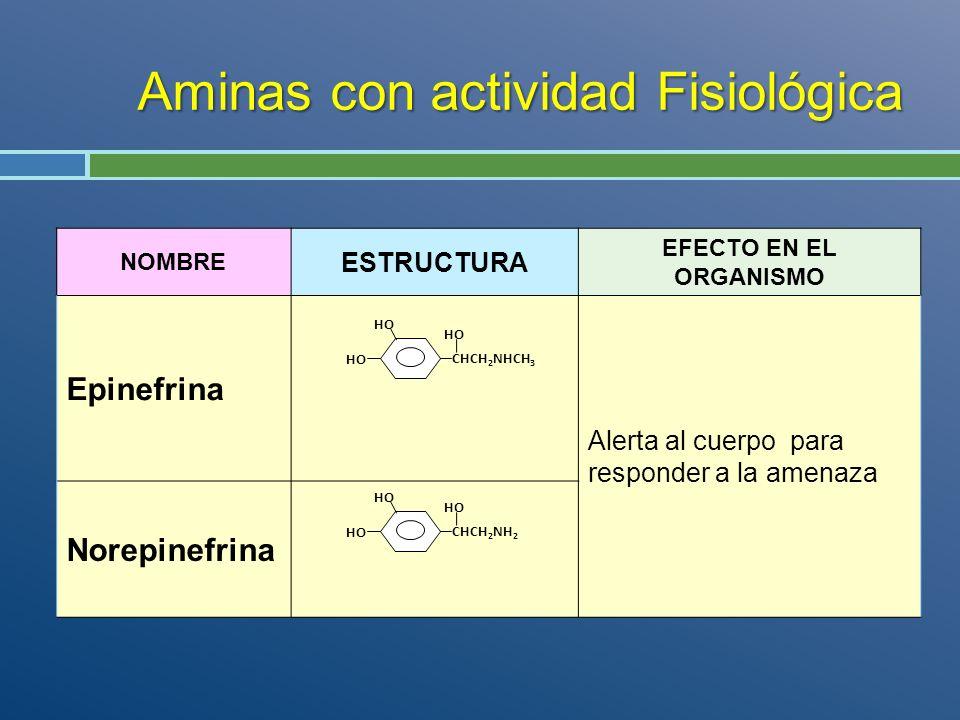 Aminas con actividad Fisiológica NOMBRE ESTRUCTURA EFECTO EN EL ORGANISMO Epinefrina Alerta al cuerpo para responder a la amenaza Norepinefrina CHCH 2