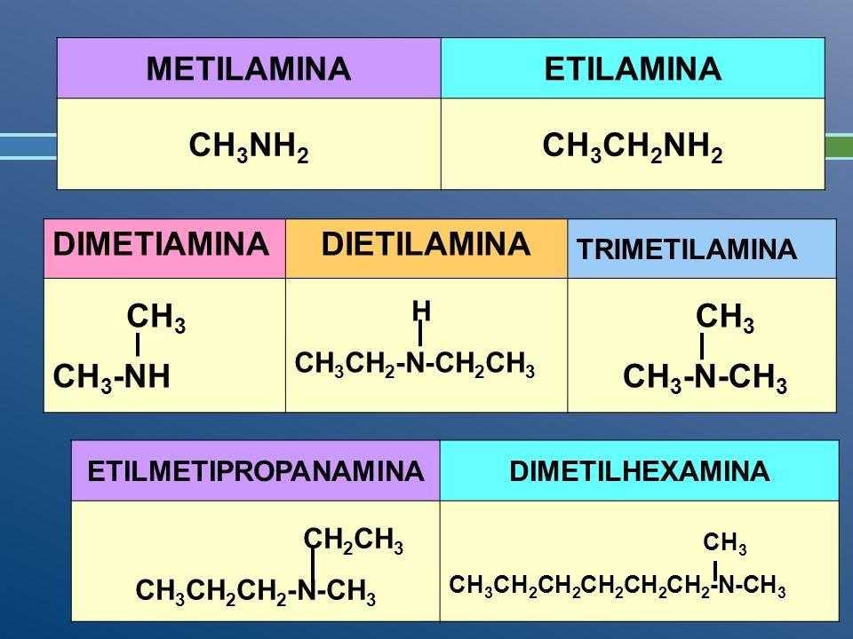 METILAMINAETILAMINA CH 3 NH 2 CH 3 CH 2 NH 2 DIMETIAMINADIETILAMINA TRIMETILAMINA CH 3 CH 3 -NH H CH 3 CH 2 -N-CH 2 CH 3 CH 3 CH 3 -N-CH 3 ETILMETIPRO