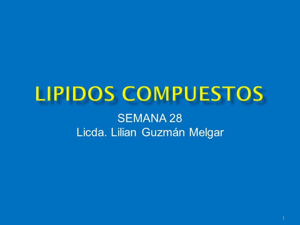 1 SEMANA 28 Licda. Lilian Guzmán Melgar