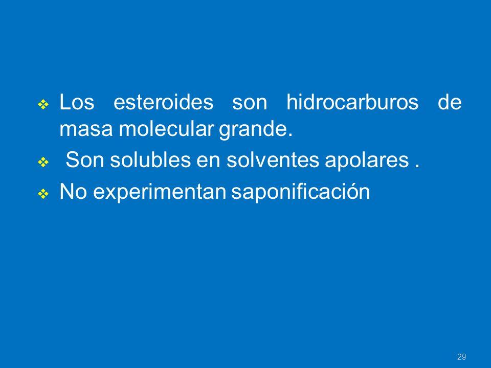 Los esteroides son hidrocarburos de masa molecular grande. Son solubles en solventes apolares. No experimentan saponificación 29