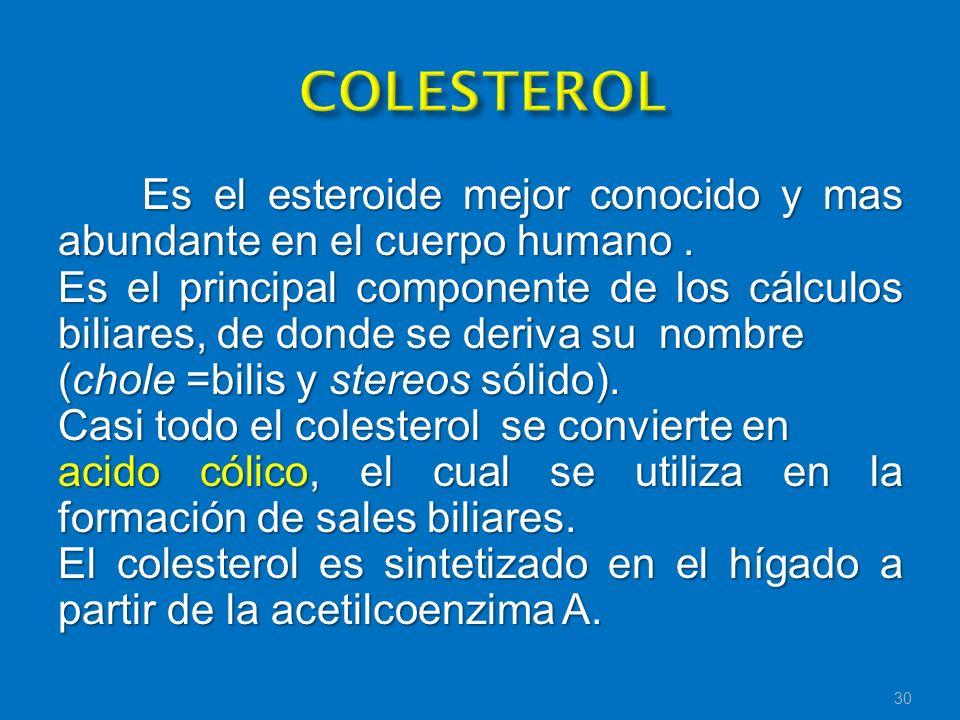 Es el esteroide mejor conocido y mas abundante en el cuerpo humano. Es el principal componente de los cálculos biliares, de donde se deriva su nombre