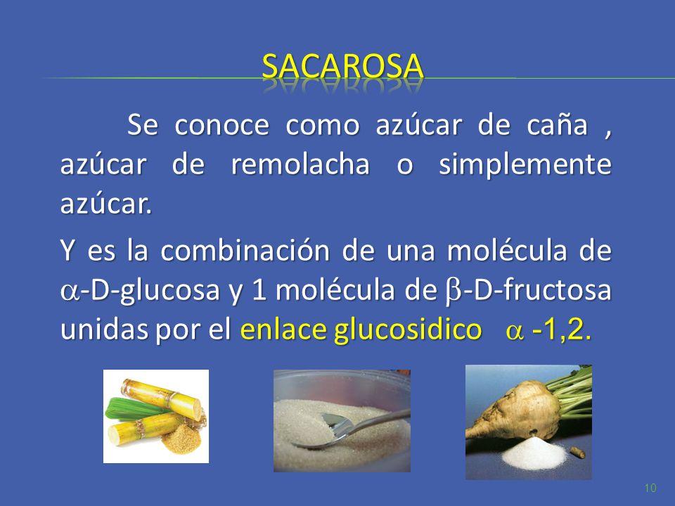 Se conoce como azúcar de caña, azúcar de remolacha o simplemente azúcar. Y es la combinación de una molécula de -D-glucosa y 1 molécula de -D-fructosa