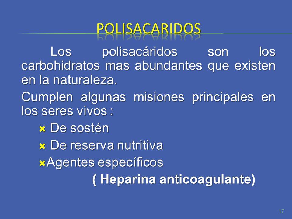 Los polisacáridos son los carbohidratos mas abundantes que existen en la naturaleza. Cumplen algunas misiones principales en los seres vivos : De sost
