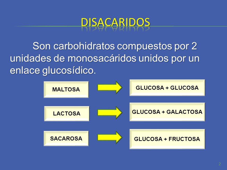Son carbohidratos compuestos por 2 unidades de monosacáridos unidos por un enlace glucosídico Son carbohidratos compuestos por 2 unidades de monosacár