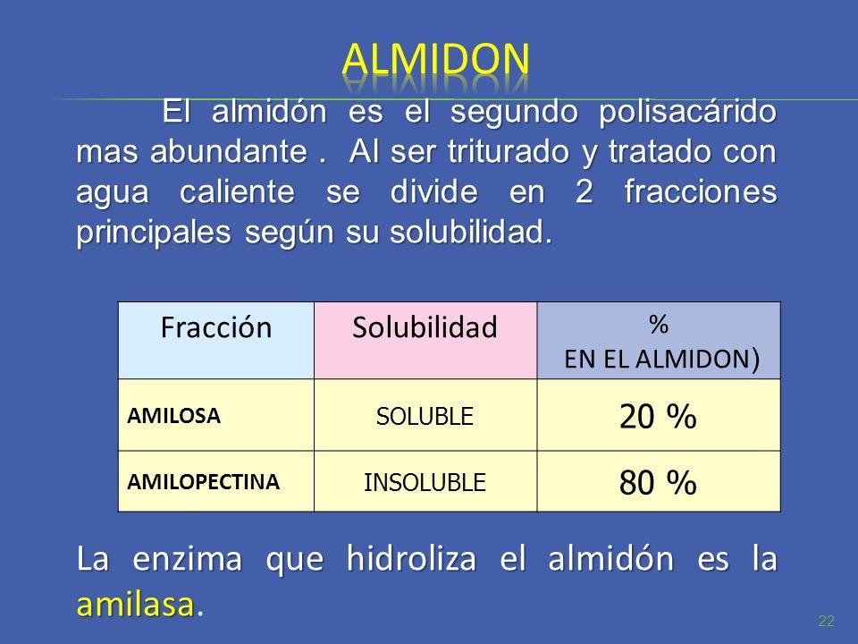 El almidón es el segundo polisacárido mas abundante. Al ser triturado y tratado con agua caliente se divide en 2 fracciones principales según su solub