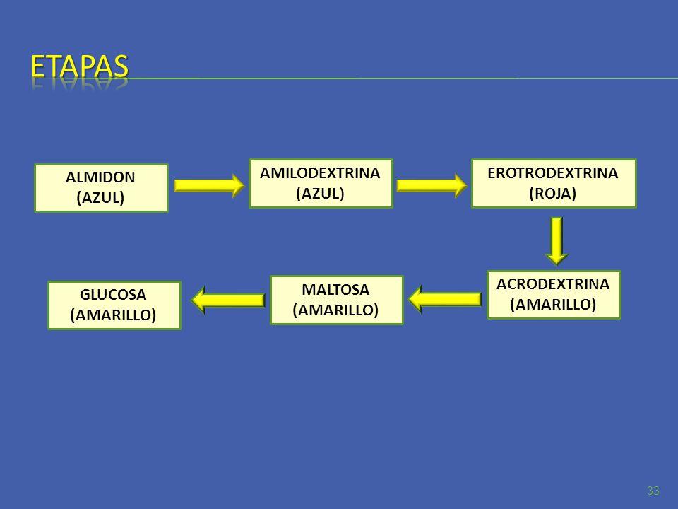 33 ALMIDON (AZUL) AMILODEXTRINA (AZUL ) EROTRODEXTRINA (ROJA) ACRODEXTRINA (AMARILLO) MALTOSA (AMARILLO) GLUCOSA (AMARILLO)