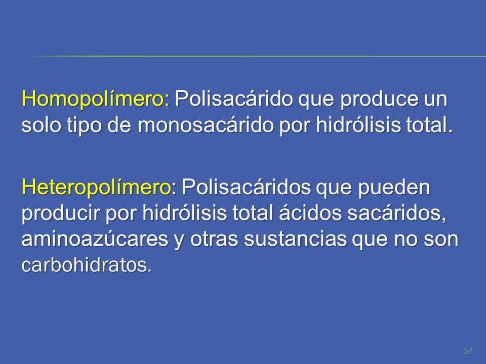 Homopolímero: Polisacárido que produce un solo tipo de monosacárido por hidrólisis total. Heteropolímero: Polisacáridos que pueden producir por hidról